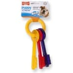 Nylabone puppy chew bijtsleutels baconsmaak (TOT 11 KG)