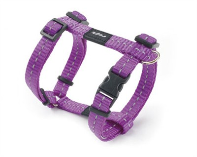 Rogz for dogs nitelife tuig paars (11 MMX20-36 CM)