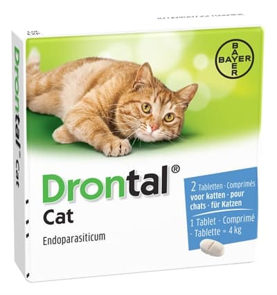 Bayer drontal ontworming kat (2 TABLETTEN)