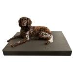 Hd orthopedisch honden ligbed grijs (100X75 CM)