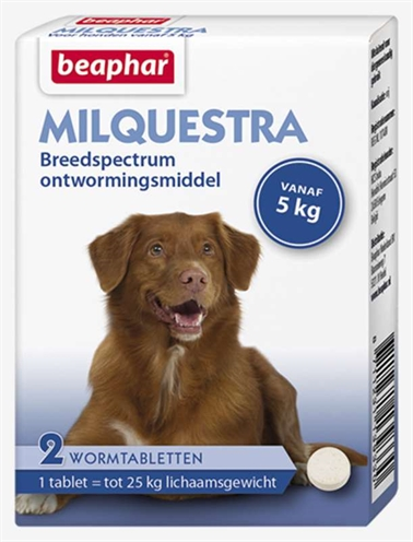 Beaphar milquestra hond (2 TBL)