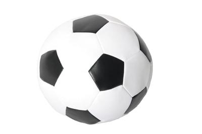 Martin sellier zachte voetbal (15 CM)