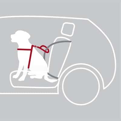 Trixie hondentuig auto dog protect zwart (65-80X2,5 CM)