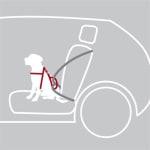 Trixie hondentuig auto dog protect zwart (40-55X2 CM)