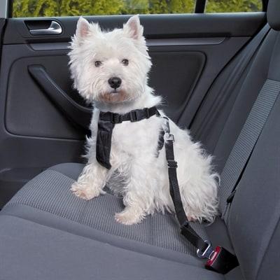 Trixie hondentuig auto incl gordel zwart (70-90 CM)