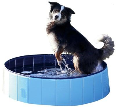 Trixie hondenzwembad lichtblauw / blauw (80X20 CM)
