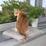 Trixie kattenmand plateau vensterbank lichtgrijs (51X36 CM)