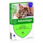 Bayer advantage kat 4 pipetten (80 VANAF 4 KG 4 PIP)