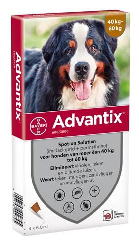 Bayer advantix spot on