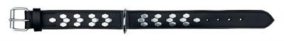 Trixie halsband hond active leer met applicaties zwart (38-45X4 CM)
