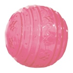 Biosafe puppy bal roze (6,5 CM)