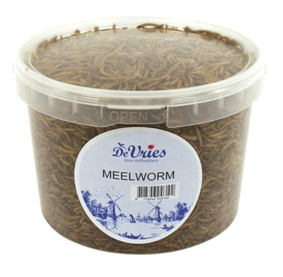De vries meelworm