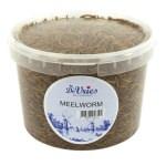 De vries meelworm (120 GR)