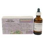 World of herbs fytotherapie blaas problemen (50 ML)
