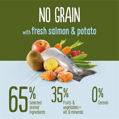 True instinct no grain medium junior salmon (12 KG)