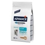Advance cat kitten chicken / rice (1,5 KG)