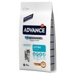 Advance cat kitten chicken / rice (10 KG)
