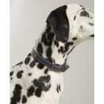 Joules halsband hond leer navy (35,5-45,5X2 CM)