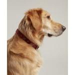 Joules halsband hond heritage tweed leer rood (45,5-56X3,8 CM)