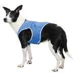 Trixie cooling vest pva blauw (20 CM)