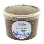 De vries meelworm (5 KG)