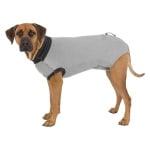 Trixie shirt voor na operatie grijs (M 45 CM)