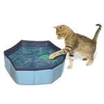 Croci zwembad kat met speelgoed