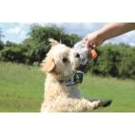 Happy pet migrator pluche wilde eend (24 CM)