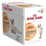 Royal canin wet intense beauty (12X85 GR)