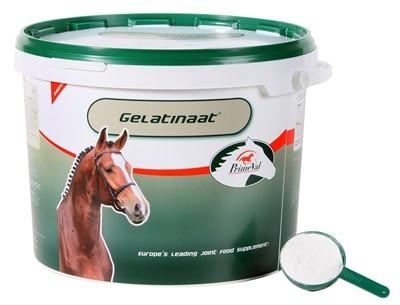 Primeval gelatinaat voor paarden