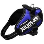 Julius k9 power-harnas/tuig voor labels blauw (MINI/49-67 CM)