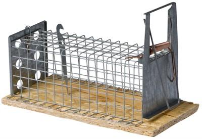Luna houten muizenval recht 1-kleps (16 CM)