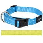 Rogz for dogs nitelife halsband geel (11 MMX20-32 CM)