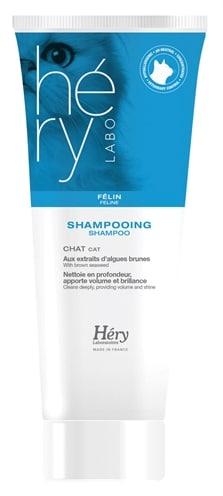 Hery shampoo kat (200 ML)