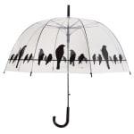Paraplu vogels op draad transparant / zwart (81,5 CM)