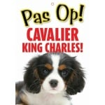 Waakbord nederlands kunststof cavalier (21X15 CM)