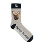 Sokken french bulldog (42-45)