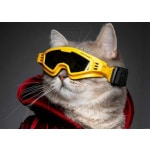 Croci skibril hond horizon geel / zwart glas (M)