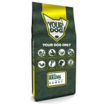 Yourdog amerikaanse bulldog pup (12 KG)