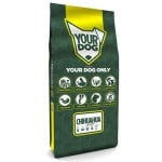 Yourdog chihuahua volwassen (12 KG)