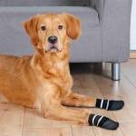 Trixie hondensokken anti-slip met rubberlaag rondom zwart (L-XL 2 ST)