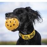 Trixie gatenbal natuurrubber met bel voor blinde of gehandicapte hond (7X7X7 CM)